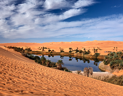 [Photo of a desert oasis]