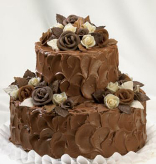 [Photo of a two-tier chocolate cake]