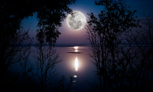 [Photo of the moon rising over a lake]