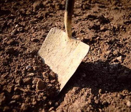 [Photo of a shovel being pushed into the dirt]