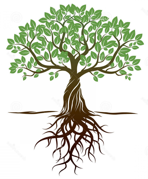 [Graphic of a tree with roots]
